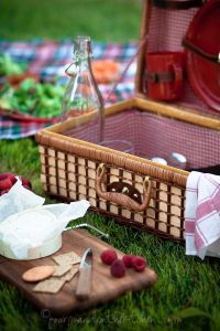 picnic with cheese and fruit plate